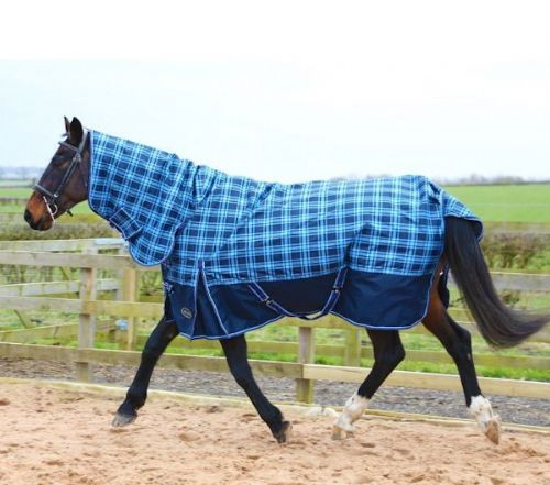 Sheldon 250gm Turnout Rug